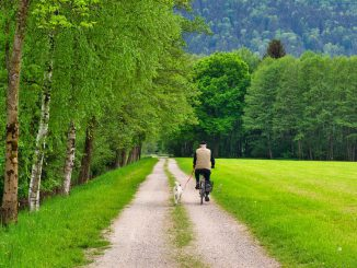Cyclists Away Cycling Nature  - Antranias / Pixabay