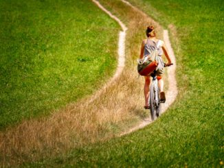 Cyclists Cycle Woman Lane Path  - fietzfotos / Pixabay