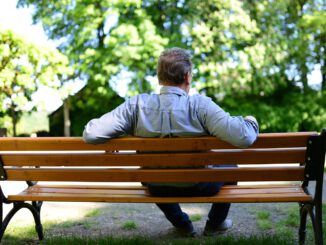 Bank Park Bench Man Sitting Relax  - congerdesign / Pixabay