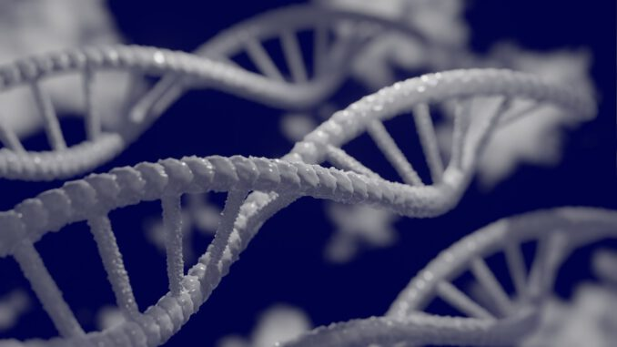 Dna D Biology Genetic Research  - Mahmoud-Ahmed / Pixabay
