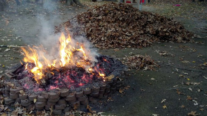 Fire Pit Burning Leaves  - brianstephens00 / Pixabay