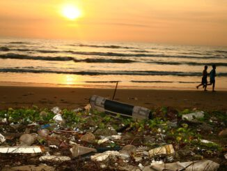 Ocean Trash Beach Pollution  - sergeitokmakov / Pixabay