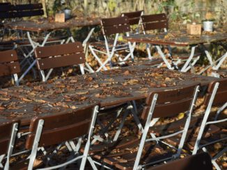 Beer Garden Autumn Leaves Table  - Reginal / Pixabay