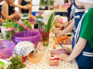 Cooking Lesson Workshops Children  - AndrzejRembowski / Pixabay