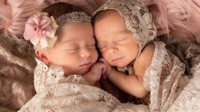 Twins Newborns Girls  - ChristineMatrangos / Pixabay